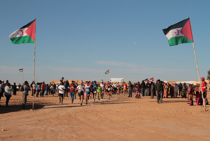 A marathon of resistance in the Sahara Desert