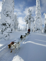 Top December 2011 destinations - Finland