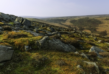 The stunning beauty of the North Yorkshire Moors