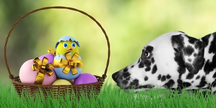 Where will you be going this Easter?