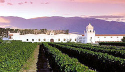 Vineyard stays - Bodega El Esteco, Argentina