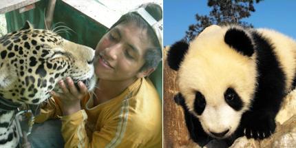 Enjoy hands-on wildlife experiences