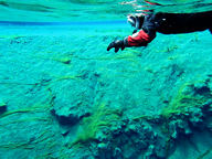 Lake Silfra's water is some of the clearest in the world