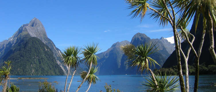 New Zealand Travel Guide and Travel Information