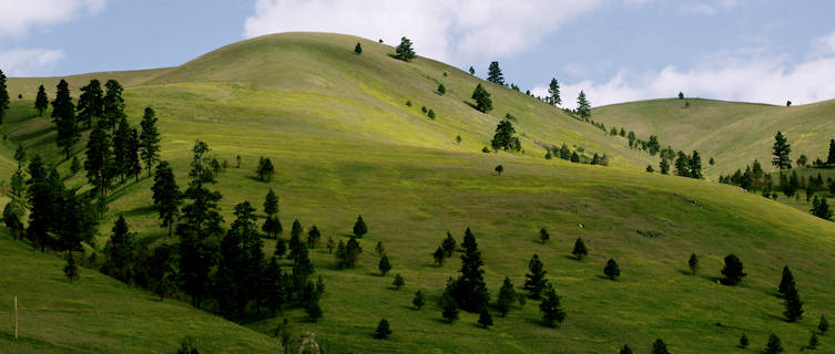 Montana Travel Guide And Travel Information